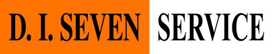 diseven_service_logo